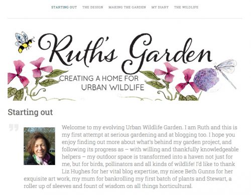 A personal diary of creating a home for urban wildlife