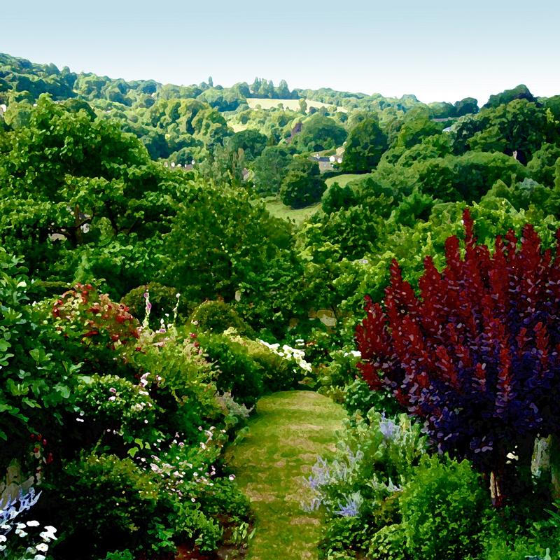 Gardens in Widcombe